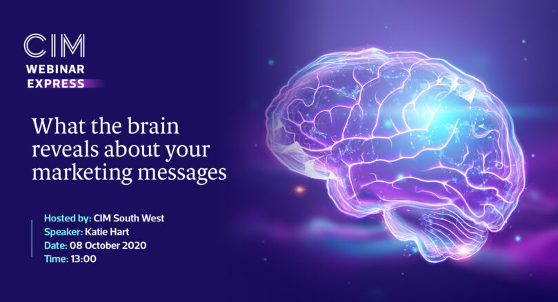 What the brain reveals about your marketing messages